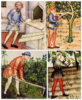Uomini in gonnella, Tacuinum Sanitatis